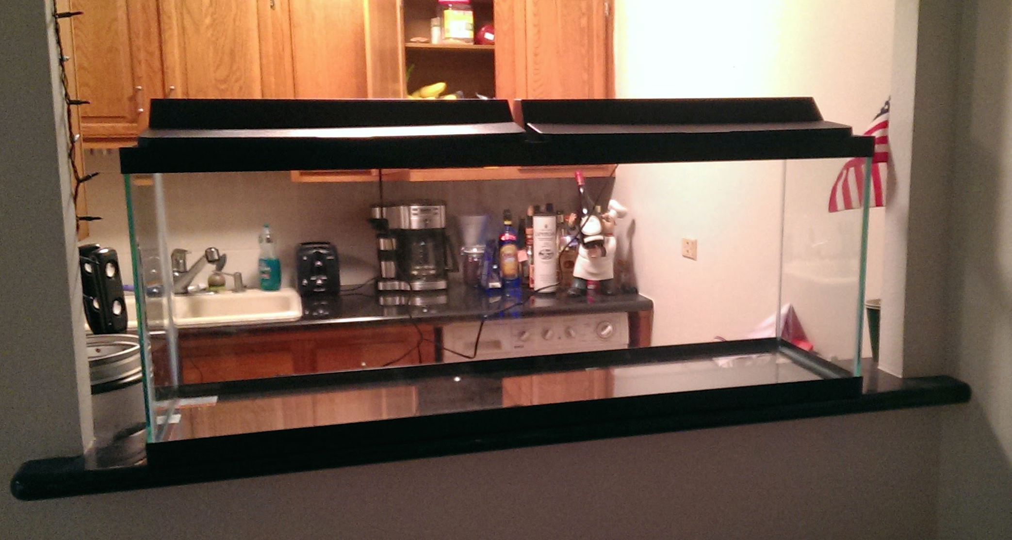 Fish tank in kitchen - Fish Tank Ledge