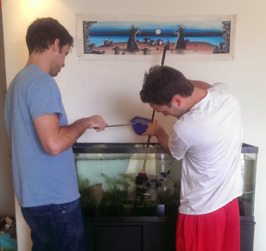 cleaning the tank